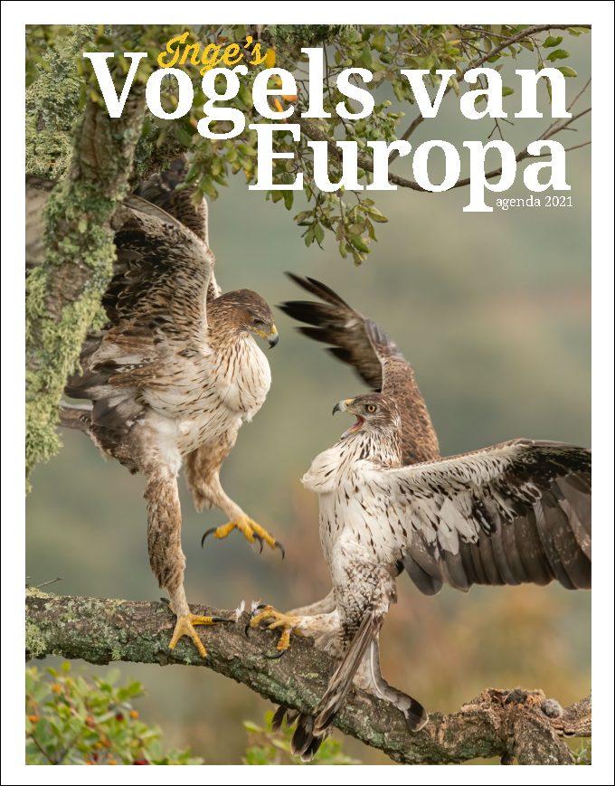 Inge's Vogels van Europa agenda 2021