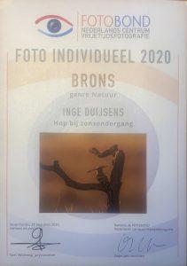 Fotobond - brons hop